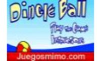 Perro Dingle Ball