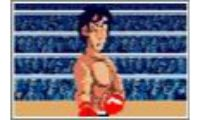 iron mikes punch out